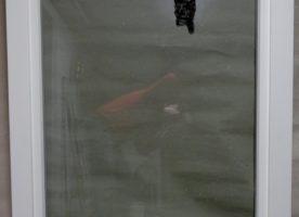 Holzfenster aus Meranti, weiß