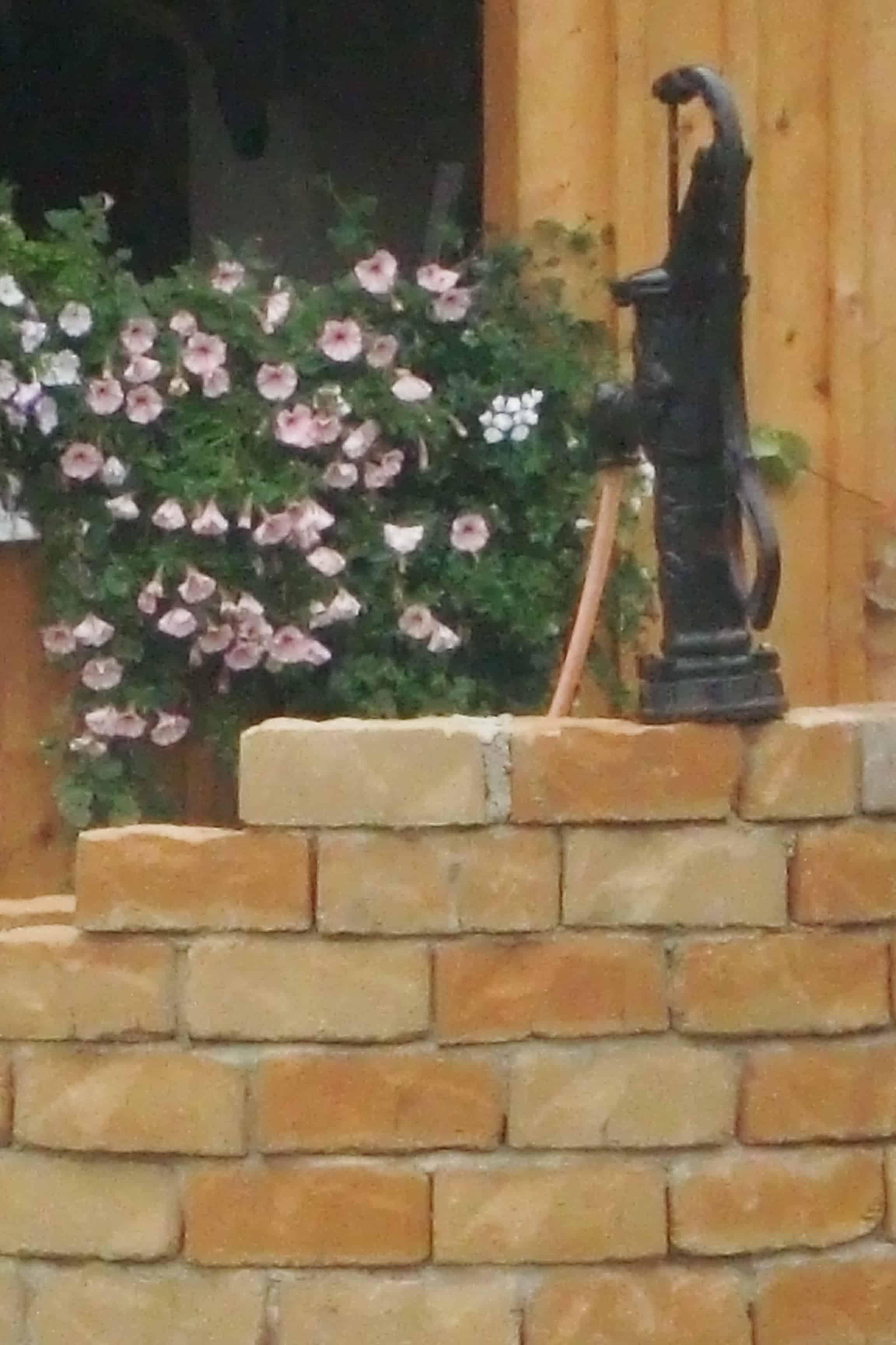 Trapezsteine Radiussteine Radialsteine Für Gartenmauer In